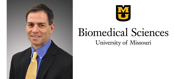 Doug Bowles to Lead CVM's Department of Biomedical Sciences
